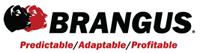 International Brangus Breeders Association